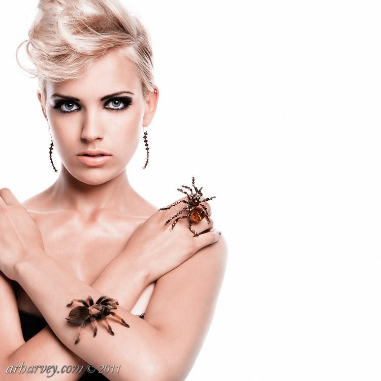 Latimer Arachnid Jewellery